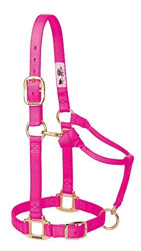 Weaver Leder Original Verstellbare Nylon Pferd Halfter, 35-7035-DP, Diva Pink, 1 Inches Average Horse -