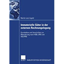 Immaterielle Güter in der externen Rechnungslegung: Grundsätze und Vorschriften zur Bilanzierung nach H.G.B., D.R.S. und I.A.S./I.F.R.S.