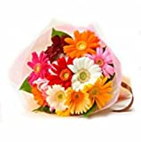 GlobalFlowerDelivery Fresh Daisy Flower Bouquet (Bunch of 12)