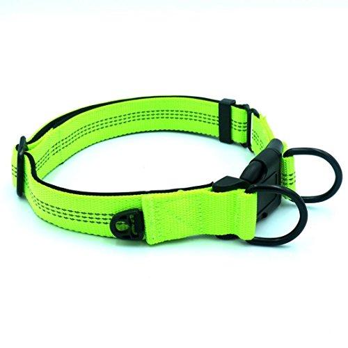 Hundeanhänger Reflektierend Haustier Halsbänder SOMESUN Verstellbare Nylon Reflektierende Hundehalsband Pet Klassische Hundehalsband Adjustable Nylon Reflective Pet Collar (43-60cm, Grün)