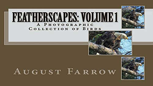 FeatherScapes: Volume 1: A Photographic Collection of Birds (English Edition) (Photo Aviary)