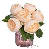 Alisy Fleurs artificielles pour la décoration, Fleurs de Pivoine artificielles en...