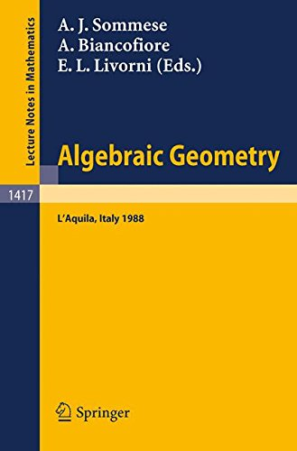 Algebraic Geometry: Proceedings of the International Conference, held in L'Aquila, Italy, May 30 - June 4, 1988 par Andrew John Sommese