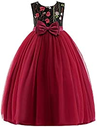 QZ Niñas Boda de Encaje de Tul Vestido Largo para niña Princesa Elegante Fiesta  Vestido Formal para niños Adolescentes Vestido de… 260d51336d1e