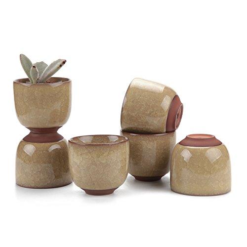 T4U 6.5CM Keramik Sukkulenten Töpfe Kaktus Pflanze Töpfe Mini Blumentöpfe EIS Crack Höher Serie Gelb 6er Set