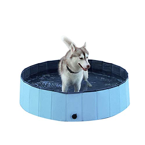PET SPPTIES Badewanne Schwimmbad Faltbar Pet Play Katzen Hunde Baden Doggy Pool Das Planschbecken Hundepool Swimmingpool PS020 (30 * 10CM, Blue)