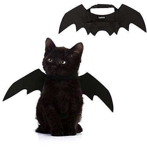 GAOS Store Halloween Pet Bat Wings Kostüm Katze Hund