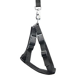 Relaxdays Cintura di Sicurezza per Cani, Guinzaglio Regolabile, Taglia S