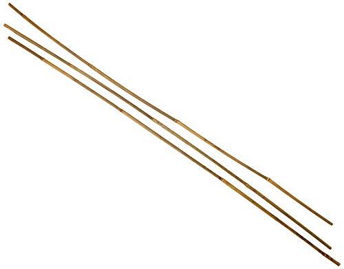 Flower 55086 Lot de 3 Tuteurs en Bambou Naturel Diamètre de 10 - 12 mm Hauteur de 1,20 m