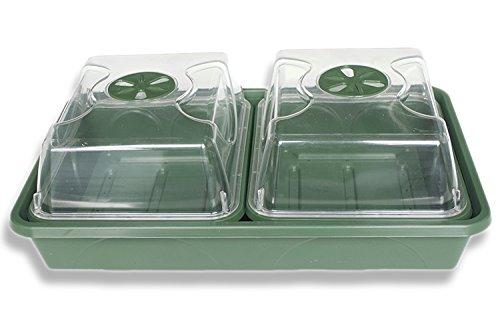 Malton Plastics earlygrow 2-Bay Fensterbank Anzuchtkasten, grün, 38Zentimeter lang