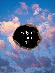 Indigo 7 (English Edition)