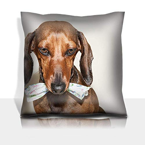 MSGDF Throw Pillowcase Cotton Satin Comfortable Decorative Soft Pillow Covers Protector Sofa 18x18 1 Pack Red Dachshund Dog with Sun Glasses or Bow tie Scarves Red dac Dark Red Bow Tie