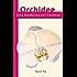 Orchidee, una medicina per l'anima