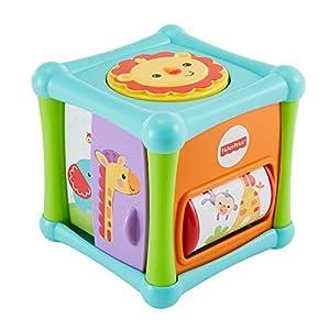 Fisher-Price - Cubo animalitos sorpresa Juguete de actividades para bebés +6 meses (Mattel BFH80)