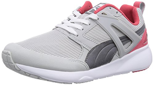 Puma Women's Arial Basic Sports Wn's Low-Top Trainer Gray Size: 4