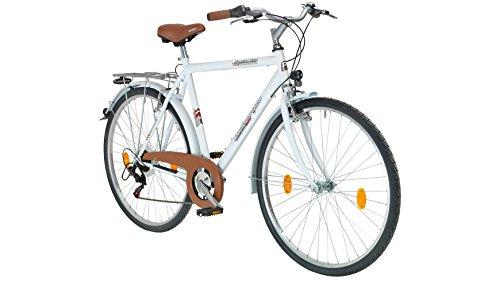 performance-city-bike-uomo-malmo-28-pollici-6-marce-freni-a-v-7112-cm-28-pollici
