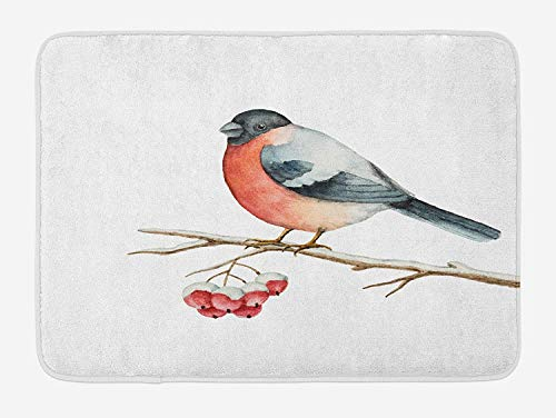 tgyew Rowan Bath Mat, Cute Wild Bird in Watercolors Sitting on Tree Branch Xmas Themed Artwork, Plush Bathroom Decor Mat with Non Slip Backing, 23.6 W X 15.7 W Inches, Coral Pale Grey Black