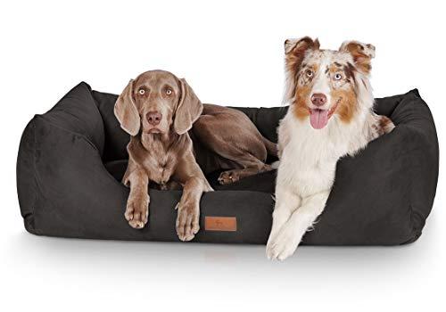 Knuffelwuff panier chien, lit pour chien, coussin, corbeille pour chien Dreamline, noir XL 105 x 75cm