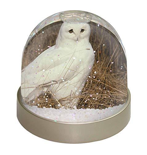 ule Schneekugel Snow Dome Geschenk, Mehrfarbig, 9,2x 9,2x 8cm ()