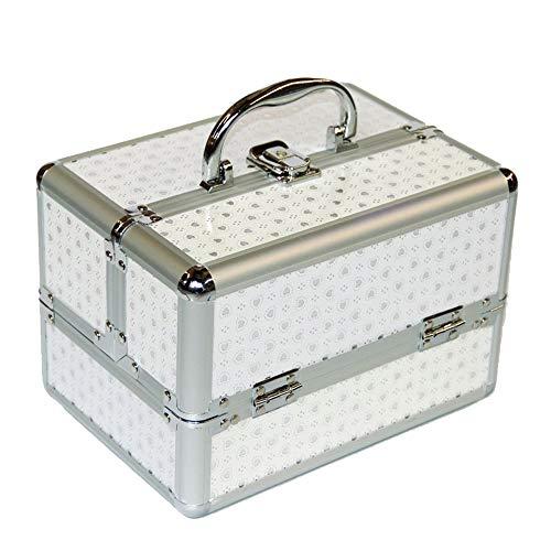 YUSDP Make-up Aufbewahrungsbox, Schmuck Organizer-Aluminiumlegierung Material Tragbarer Griff-Einstellbare Trennwände, Schnallen-Design Hohe Kapazität für Hauptreise
