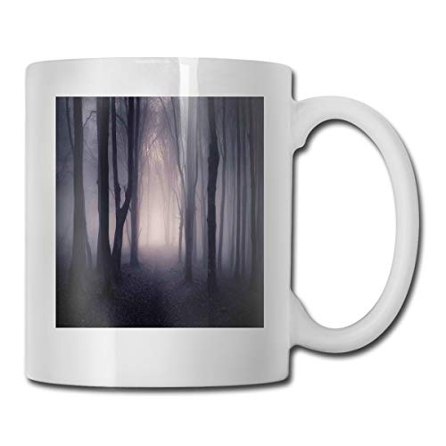 Jolly2T Funny Ceramic Novelty Coffee Mug 11oz,Path Through Dark Deep In Forest with Fog Halloween Creepy Twisted Branches Picture,Unisex Who Tea Mugs Coffee Cups,Suitable for Office and Home