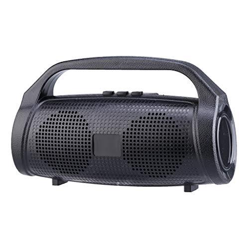 ToDIDAF Q23 Tragbarer Drahtloser Bluetooth-Lautsprecher, Mini-Musik-Player, FM-Radio + USB-Funktion, Schnelles Laden und Langer Standby-Modus - Schwarz/Rot/Blau/Grün (Schwarz)