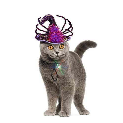 IPOW Halloween-Kostüme für kleine Hunde und Katzen, super lustig, süße Katze Hund Spinnen Kostüm Katze Hexe Hut mit einem individuellen blinkenden LED-Licht attraktive kleine Hunde Katze Welpen (Attraktive Kostüm)