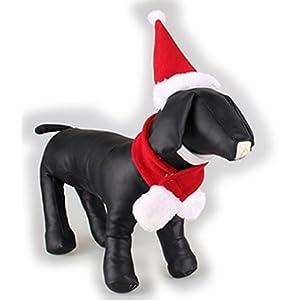 Haustier-Produkte Heiße nette hübsche Weihnachtsroter Hundehut-Schalklage