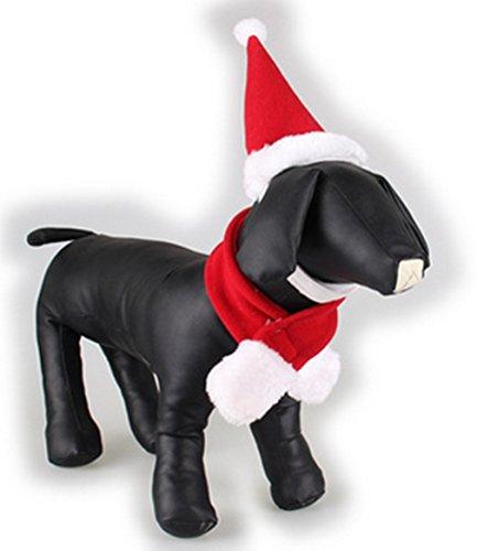 carino bel cane rosso vestito del cappello sciarpa Pet Products caldo Natale (L)