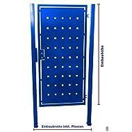 Pforte Tür Tor Eingangstor Gartentor Hoftor Blau pulverbeschichtet 105cm x180cm
