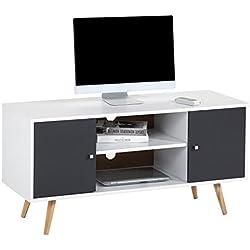 IDIMEX Meuble TV Murcia Banc télé de 110 cm au Style scandinave Design Vintage avec 2 niches et 2 Portes, en MDF décor Blanc Mat et Gris Anthracite