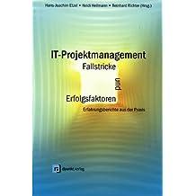 IT-Projektmanagement, Fallstricke und Erfolgsfaktoren