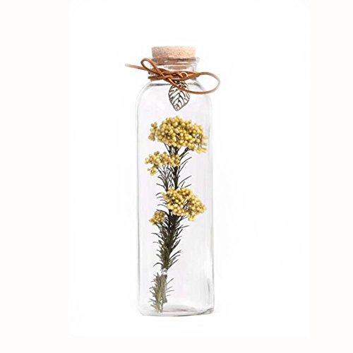 Glas Star Medium Black (DIY getrocknete Blumen, die Flaschen-Glas-Dekorations-Flasche # 3 wünschen)
