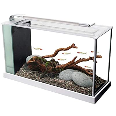 Fluval Spec V Aquarium Kit, 5-Gallon from Rolf C. Hagen (USA) Corp.