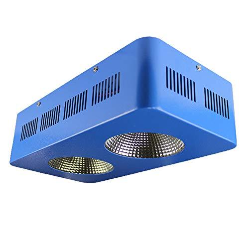 Full Spectrum Reflektor (NANANA Pflanzenlampe Zimmerpflanzen Reflektor, Full Spectrum COB Chips mit 600 Watt Wachsen Lampe für Pflanzen und Blumen)