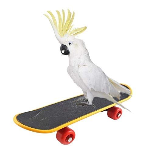 368° inspiration Vogel Spielzeug Haustier Vogel Spielzeug Papagei Spielzeug Lustige Intelligenz Skateboard Spielzeug Ständer Barsch Spielzeug for Sittich Nymphensittiche Vogel Training Zubehör -
