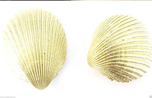 2 x or véritable mer Coque Lames de mariée pinces à cheveux sirène Boho Plage M02 * * * * * * * * exclusivement vendu par – Beauté * * * * * * * *
