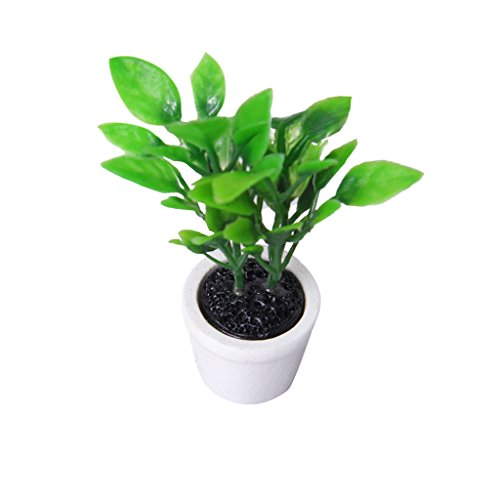 1-12-casa-de-munecas-en-miniatura-planta-verde-en-maceta-blanco-jardin