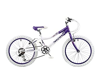 "Concept Chill Out Junior Girls 20"" Wheel 6 Speed MTB Mountain Bike Bicycle Supplied With A Free ZipStix Single Pack"