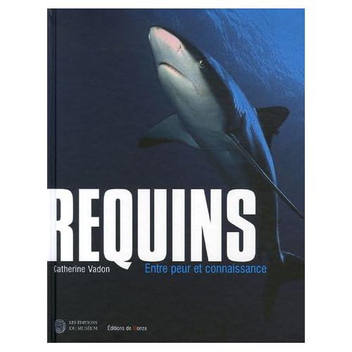 Requins : Entre peur et connaissance
