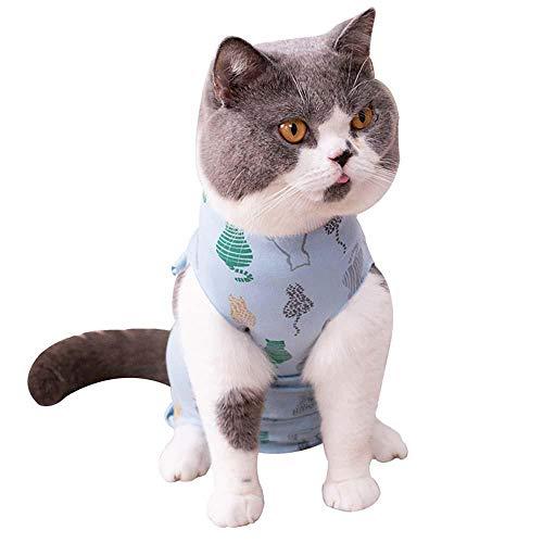 Auker - Collar electrónico Profesional para Gatos, recuperación de Gatos, Ropa después del Uso de cirugía, Traje de Cuidado quirúrgico para heridas Abdominales, Evita heridas táctiles