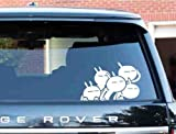 #9: Indiashopers Funny Cute Bunny Rabbit Hood, Bumper, Sides Windows, Car Sticker,20X13 Cm