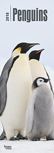 penguins-pinguine-2018-original-browntrout-kalender-slimeline-mehrsprachig-kalender-slimline-kalende
