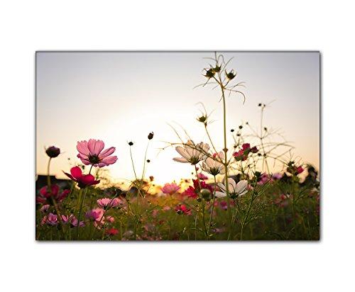 PB Art - Blumenbild 80 x 120 cm als Kunstdruck auf Leinwand und Holzkeilrahmen - Beste Qualität,...