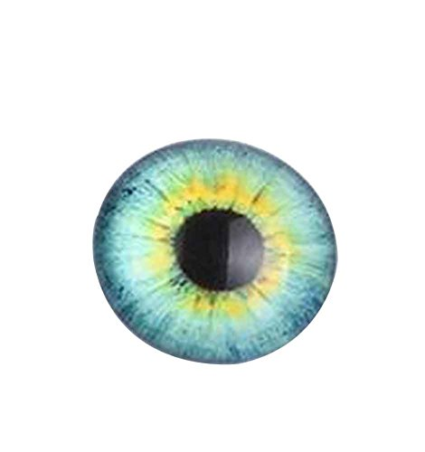 Black Temptation Set von 16 Glas gefälschte Augen Craft Eyes Puppe Augen DIY Zubehör [M]