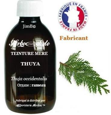 Teinture mère - Thuya (thuja occidentalis) rameau - flacon 60 ml