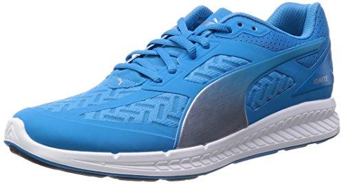 Puma Ignite Powercool Men Running Shoes Fitness Jogging 188076 03 grey hawaiian ocean-puma silver