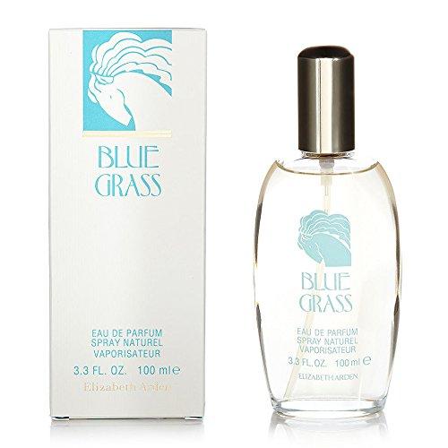 elizabeth-arden-grass-eau-de-parfum-100-ml-blue