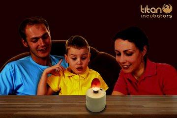 Ultrabright Chicken Egg Candler/Egg Candling - Battery Powered 6