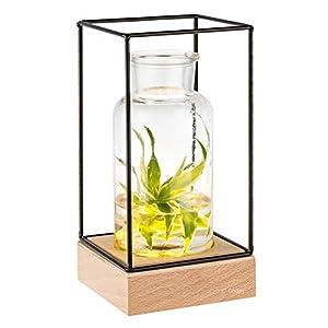 Gadgy® Jarrón decorativo con luz led | Florero vidrio con Base de madera natural y diseño de metal l 22.5 x 10.8 x 10,8…